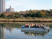 深川紅葉祭りイメージ